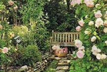Garden/outside spaces