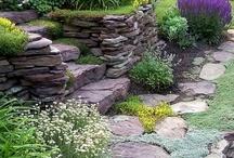 ~Backyards~Porches~Patios~Decks~ / by Desiree Montoney