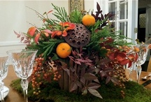 DIY Thanksgiving Ideas / by Southern Living Plant Collection