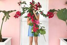 ✿❀ Colour pop! ✿❀ / Vintage fabrics, colour, color, bright colours, bright hues, gossip girl, notebooks, floral, Blaire Waldorf, pastels, pantone, colour, color, colour pop, color pop