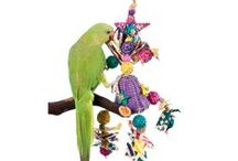 Holiday Gift Ideas for Your Pet Bird / by PetSolutions Pet Supplies