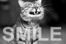 SMILE... / Because  Happy looks good on everybody,