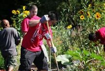 Civic Engagement / Pacific University values community service and actively promotes giving back to the community.