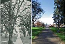 Pacific, Then and Now / Side-by-side photos of Pacific in the past and Pacific today.  / by Pacific University
