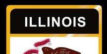 USA: Illinois - State / Illinois = Hauptstadt / Capital - Springfield ~~~ Illinois - Vereinigte Staaten von Amerika / United States of America / USA