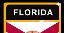 USA: Florida - State / Florida = Hauptstadt / Capital - Tallahassee ~~~ Florida - Vereinigte Staaten von Amerika / United States of America / USA