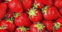 Pflanzen: Erdbeeren / Erdbeeren / Strawberries + Obst - Früchte / Fruit