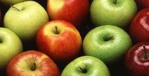 Pflanzen: Apfel / Apfel / Apple + Obst - Früchte / Fruit