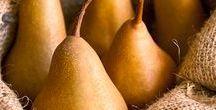 Pflanzen: Birnen / Birnen / Pear + Obst - Früchte / Fruit