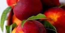 Pflanzen: Pfirsich - Nektarine / Pfirsich / Peach + Nektarine / Nectarines + Obst - Früchte / Fruit