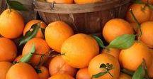 Pflanzen: Orange / Orange - Apfelsine / Orange Fruit + Zitrusfrüchte - Zitruspflanzen / Citrus