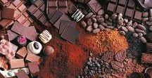 Pflanzen: Kakao - Kakaobohnen / Kakaobohnen / Cocoa Bean + Schokolade / Chocolate
