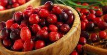 Pflanzen: Preiselbeere / Preiselbeere / Cranberry + Obst - Früchte / Fruit