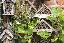 Garden Wildlife & Their Homes / The best ideas for making a home for creepy crawlies, birds, bats and hedgehogs in your garden