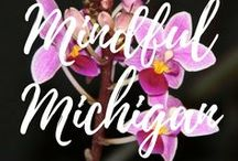 Mindful Michigan / Travel in Michigan.  Respectful Living.