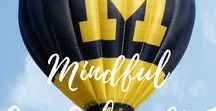 Mindful Ann Arbor Michigan / All Things Mindful, Vegan, Vegetarian in Ann Arbor, Michigan including places to see and things to do!