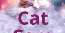 Cat & Kitten Care / Topics include cat food, litter, pet water fountains, cat trees, toys, and health.