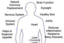 Nutrition: Benefits/Comparisons / by Julie Holden