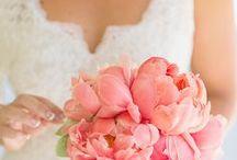 Blush + Pale Pink Wedding