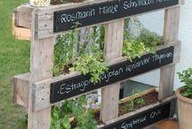 Garten & Pflanztipps