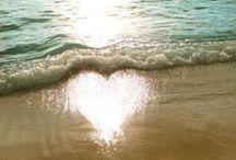 Hearts <3 / <3  <3  <3  <3  <3  <3  <3  <3  <3  <3