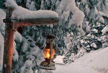 ~ Seasonal ~