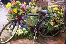 Bikes, trikes, wagons and flowers / Flowers on bikes and all wheeled things!