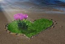 Valentine's/Love