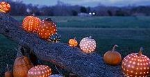 Fall is in the Air / Fall Love. Pumpkin Pie. Warm Cinnamon. Colorful Leaves. Misty Mornings. Wool Sweaters. The Smell of Woodsmoke in the Air. Early Evenings. Veggie Soup.