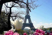 My Paris Obsession / Paris ...Paris ... Paris...