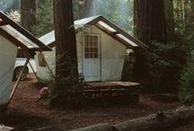 camp / by Abbie Sawyer