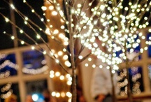 Lighting Decorations / lighting for gardens, weddings and parties