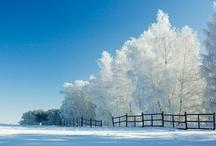 Winter calm / by Suzanne Vanderwiel