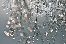 Winter / Winter colours & nature