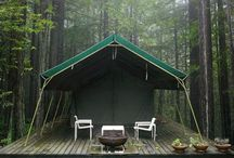 Glamping. / by Natalie Payne