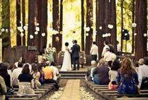 My Wedding Day! / by Fairytalefox