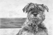 *ART ~ DRAWING DOGS / by Janet Marie