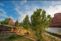 Resort in Moab, UT - Sorrel River Ranch Resort & Spa / A four star luxury resort and spa with a wellness focus and outdoor adventure programs. / by Sorrel River Ranch Resort & Spa