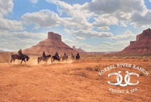 Ranch and Horse Rides / We are a fully operating horseback riding ranch with experienced wranglers guiding you on breathtaking trail rides.  All levels can enjoy this ultimate experience of the Southwestern landscape. / by Sorrel River Ranch Resort & Spa