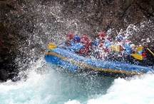 Rafting / by Sorrel River Ranch Resort & Spa