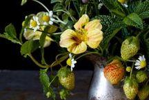 INSPIRATION | florals