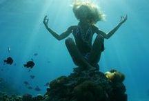 ocean / by Jessie Mires