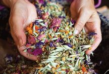 Nature's Medicine Chest / Herbs and Spices to Heal and Help the Body and the Mind. / by Thrifty Foodies