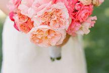 Wedding / Villa Benni, Bologna July 4, 2015  / by Alexa Aldridge
