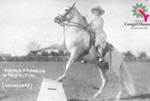 Horsing Around / What bonds cowgirls together - the love for the horse. / by National Cowgirl Museum and Hall of Fame