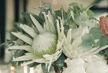 Wedding greenery/flowers