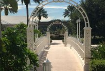 Disney's Grand Floridian Resort/Wedding Pavilion / The most magical wedding venue on earth!