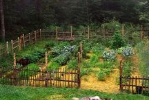 Our Someday Hobby Farm