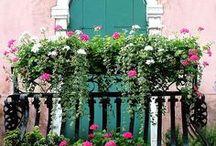Balkóny,květinová okna a terasy