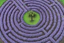 labyrinth / The point of a maze is to find its centre. The point of a labyrinth is to find your cenre.